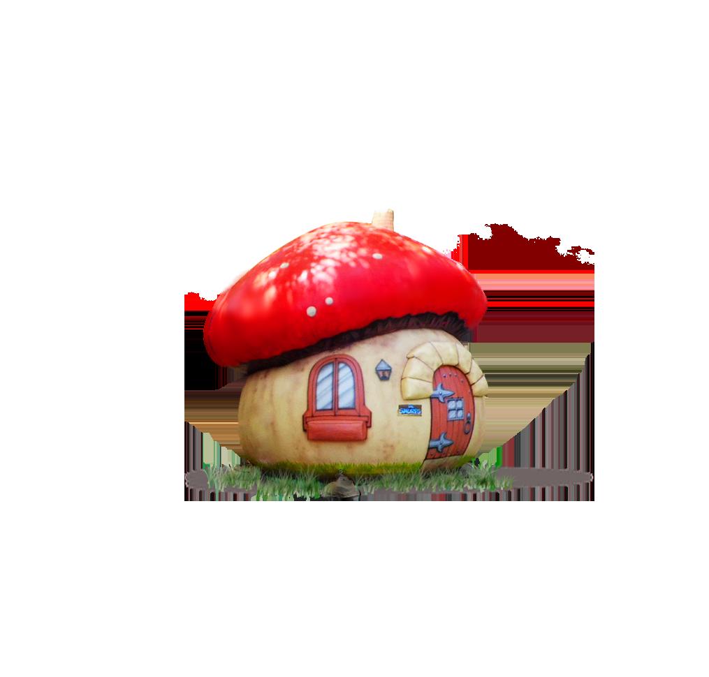 https://extraturkiye.com.tr/wp-content/uploads/2021/01/2.png